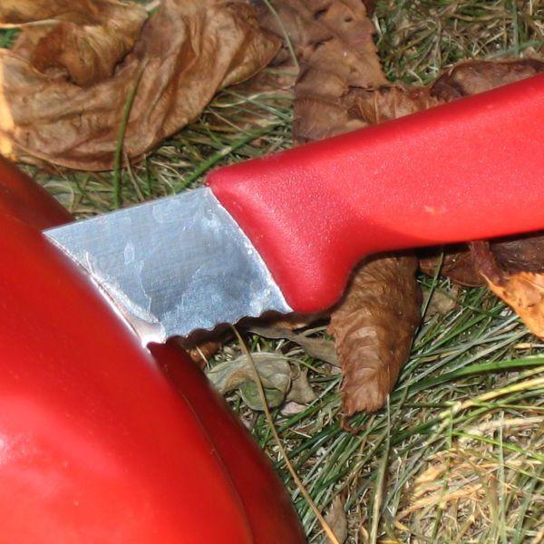 Набор Victorinox из 5 ножей и овощечистки с красными рукоятями