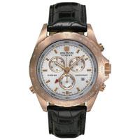 Часы Swiss-Military Hanowa Navigator Urban 06-4100.09.001, фото