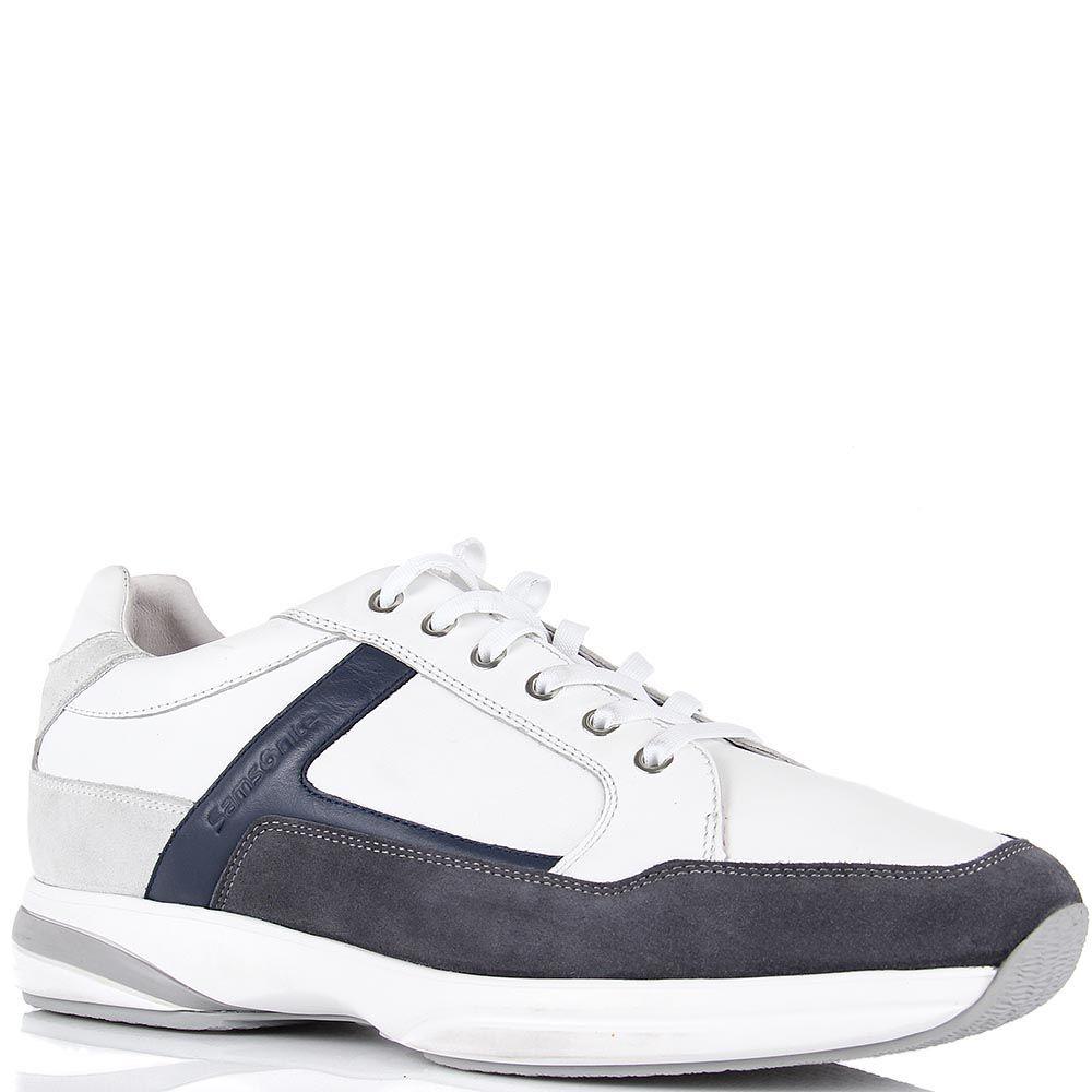 Мужские кроссовки Samsonite бело-серые с синими вставками