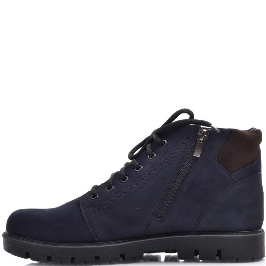 Ботинки Prego зимние синего цвета из нубука с перфорацией вдоль подошвы и вставками коричневого цвета