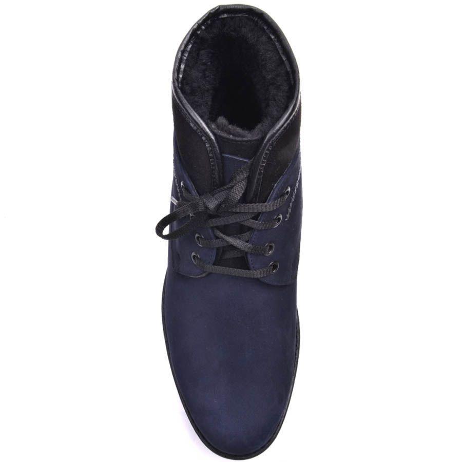 Ботинки Prego зимние синего цвета из нубука на шнуровке с черной вставкой по краю