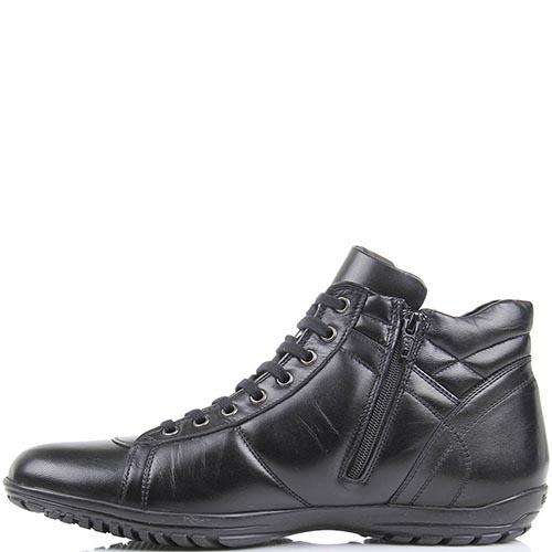 Кроссовки Baldinini высокие кожаные черного цвета с фирменной шильдой, фото