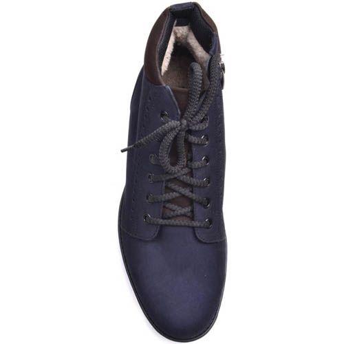 Ботинки Prego зимние синего цвета из нубука с перфорацией вдоль подошвы и вставками коричневого цвета, фото