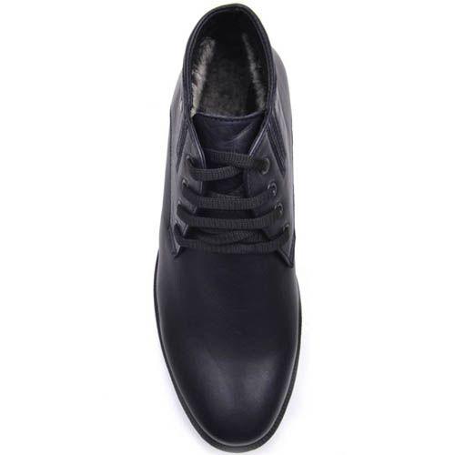 Ботинки Prego зимние на меху синего цвета с черными шнурками, фото
