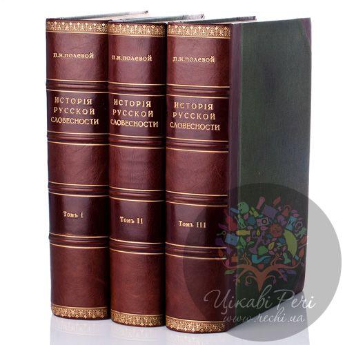 Антикварная книга «История русской словесности», Полевой П.Н. (1900 г.) , фото