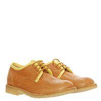 Кожаные коричневые туфли на шнуровке Gallucci, фото
