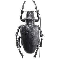 Настенный декор Kare Longicorn Beetle Matt Black 42х100х7см, фото