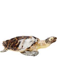 Статуэтка Kare Water Turtle Small 9х33,5х21см, фото