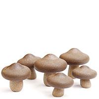 Набор магнитов Qualy Shiitake в виде грибов, фото