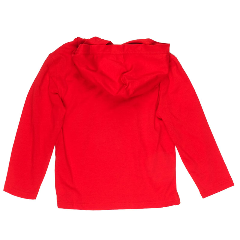 Красная толстовка Polo Ralph Lauren с капюшоном