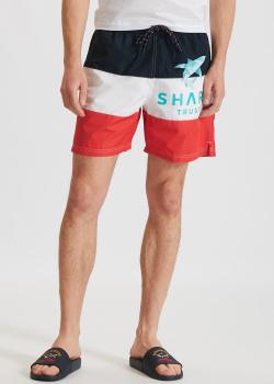 Пляжные шорты Paul&Shark в полоску, фото