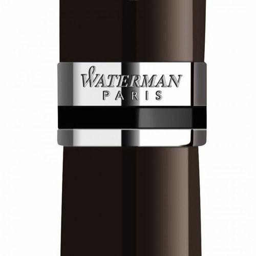 Шариковая ручка Waterman Expert Deep Brown  CT, фото