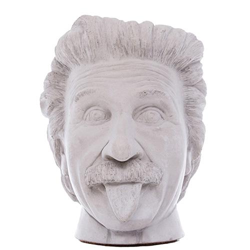 Серая ваза-органайзер Vase Head Эйнштейн многофункциональная, фото