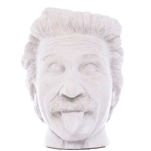 Ваза-органайзер Vase Head Эйнштейн, фото