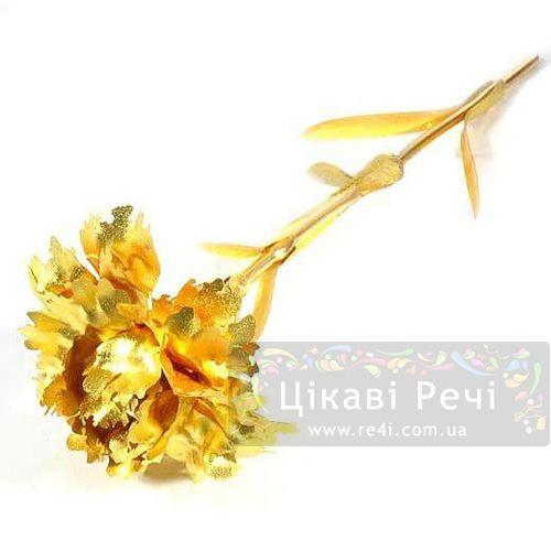 Золотая гвоздика Rose, фото
