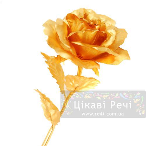 Золотая роза Rose раскрытая, фото