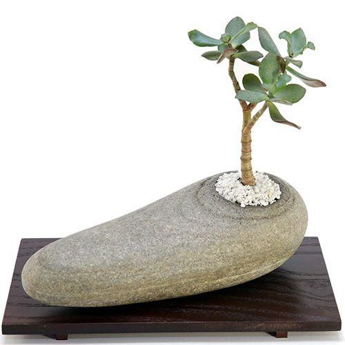 Композиция из натурального камня и суккулента IKIGAI Rainbow Collection lr-1 большая, фото