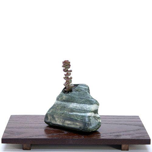 Композиция из натурального камня и суккулента IKIGAI Angel Collection sa-4 маленькая, фото