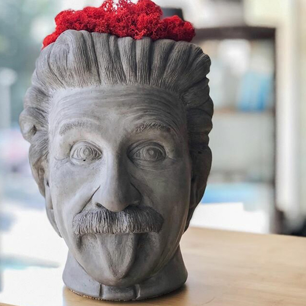 Серая ваза-органайзер Vase Head Эйнштейн многофункциональная