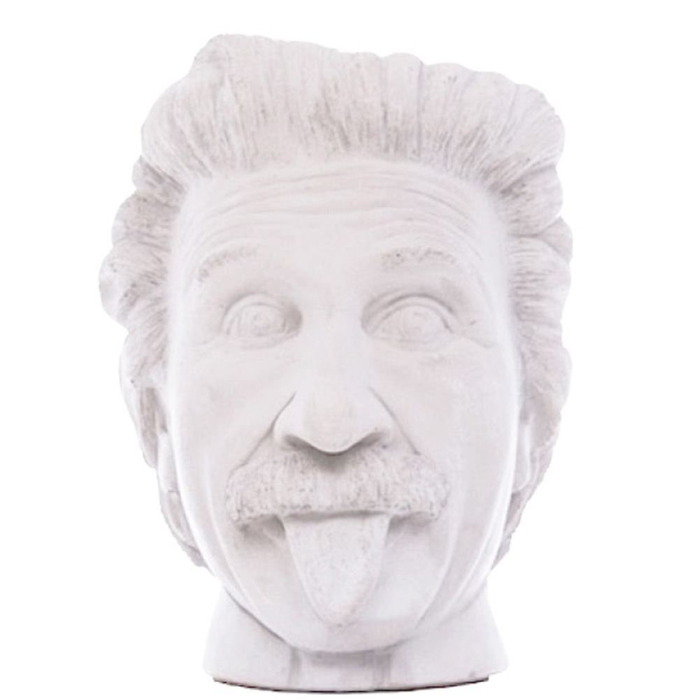 Ваза-органайзер Vase Head Эйнштейн