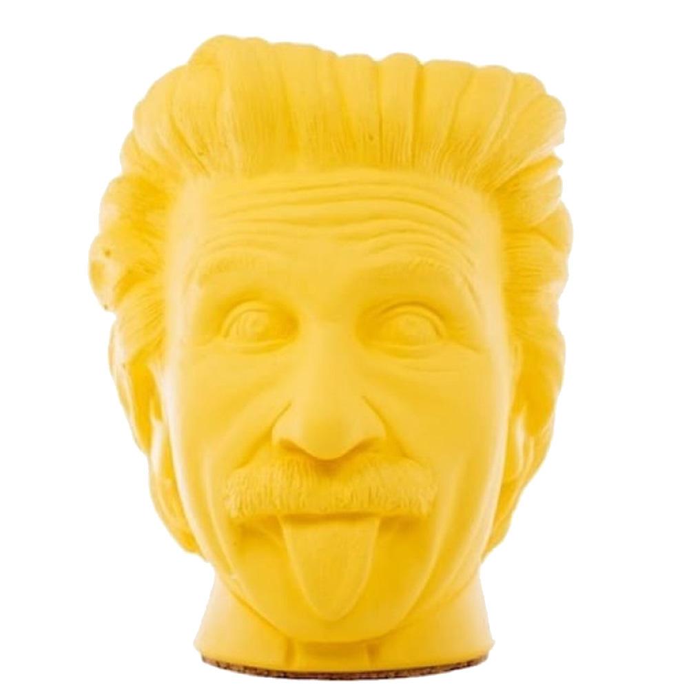 Декоративная ваза-органайзер Vase Head Эйнштейн ручной работы