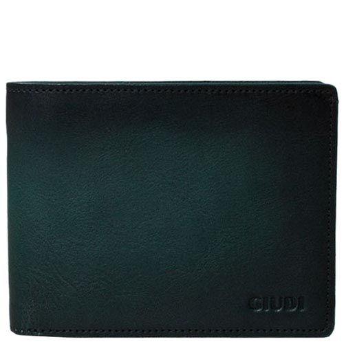 Стильный зеленый кошелек Giudi Leather из кожи на застежке