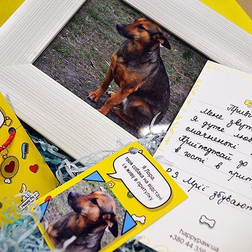 Happy Paw Собака на расстоянии средняя, фото