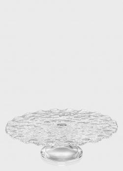 Тортовница IVV Special Clear волнистой формы 33см, фото