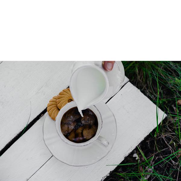 Набор из 6 чайных чашек с блюдцами Costa Nova Village белого цвета